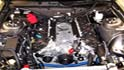 The Unofficial Battle for Engine-Building Supremecy at ROUSH (5.0 Mustang)